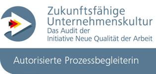 161222_INQA_Audit-ES
